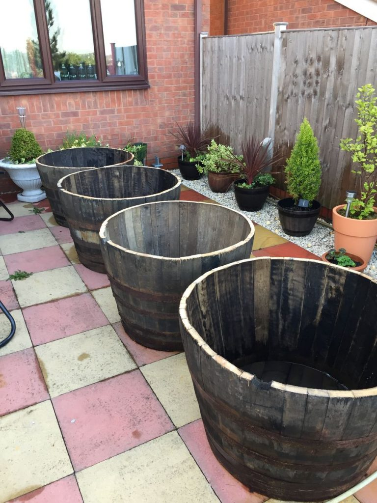 Large Oak Whiskey Barrel Planters for Trees and Shrubs