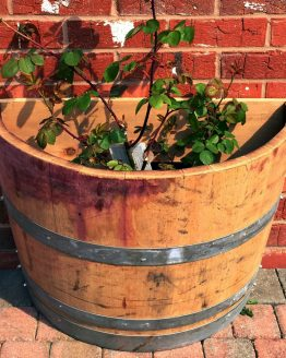 Flat Back Wine Barrel Planter