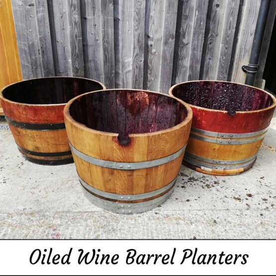 Oiled Oak Wine Barrel Planters