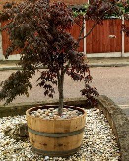 Half Wine Barrel Planter