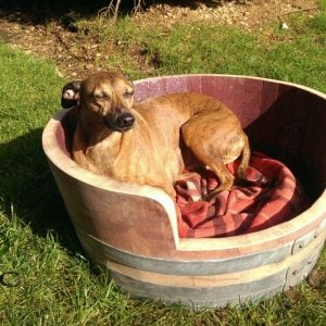 Oak Barrel Dog Bed