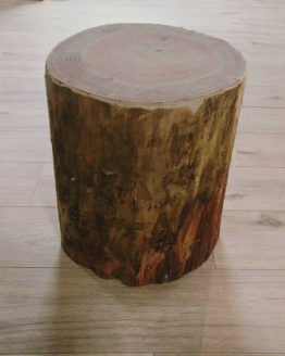 Softwood Stump Log Stretch