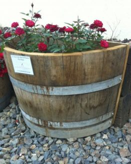 Quarter Back Barrel Planters - Oak with roses