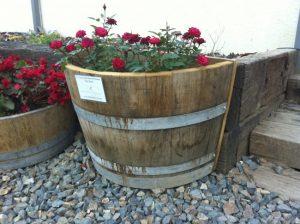 Quarter Back Barrel Planters - Oak with roses