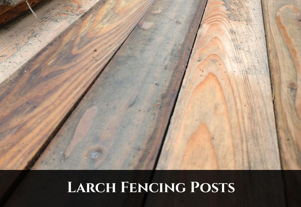 Larch Fencing Posts