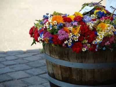 Oak Barrel Planters with Summer Flowers