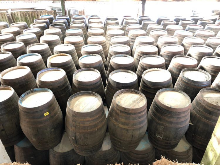 Large 120 Gallon Whiskey Barrels