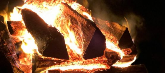 Kiln Dried Seasoned Hardwood Firewood Logs
