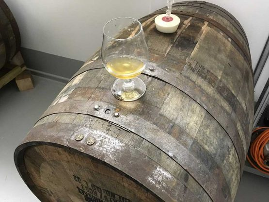 Scotch Whisky Barrel for Brewing Beer