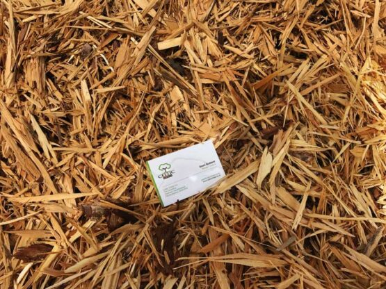 Pembrokeshire Softwood Virgin Shred Woodchip